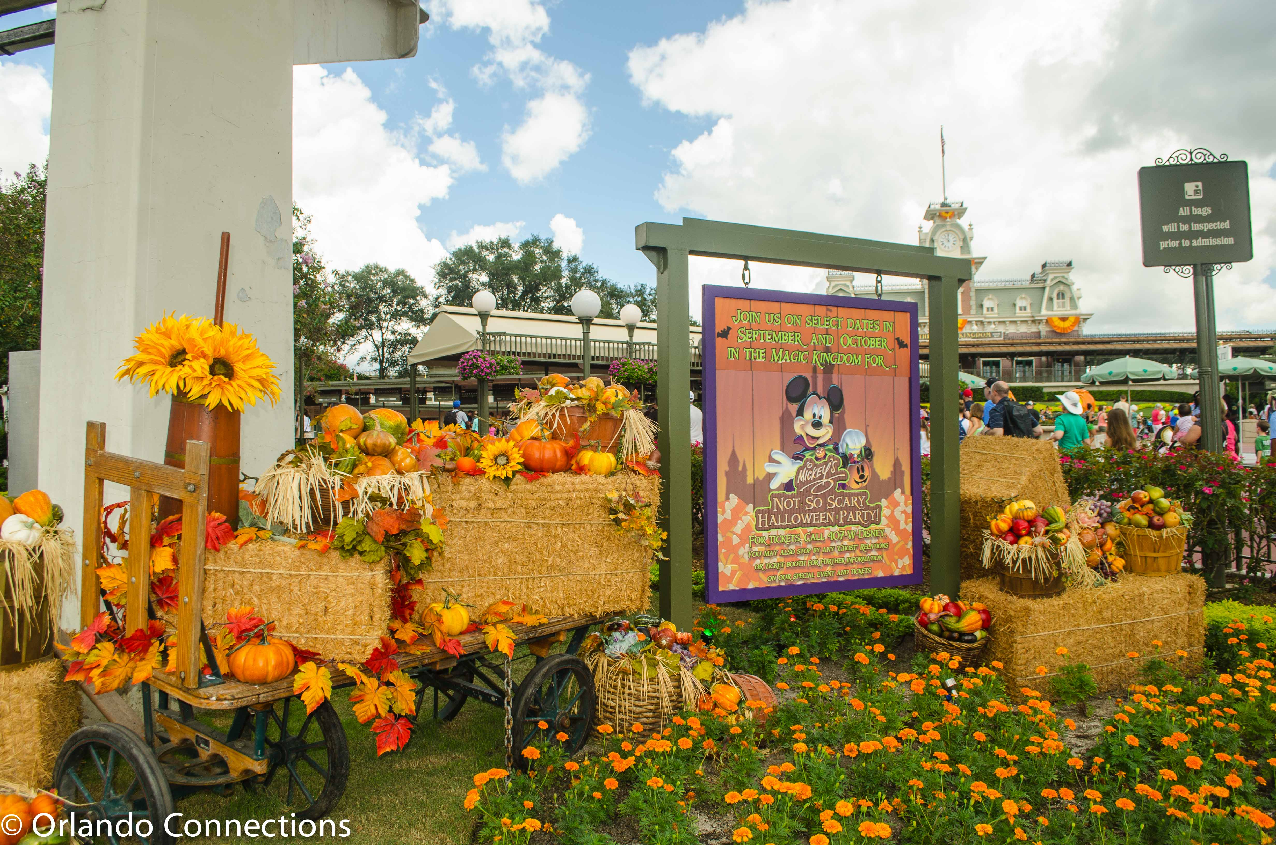 mickeys not so scary halloween party begins on september 15 so of course the magic kingdom at walt disney world is already decorated with amazing fall - Disney Halloween Orlando